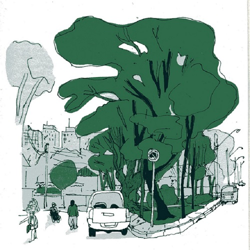 projeto de arborização da avenida paralela